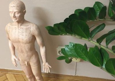 Andrea-Hindinger-fisioterapia-osteopatia-bozen-017